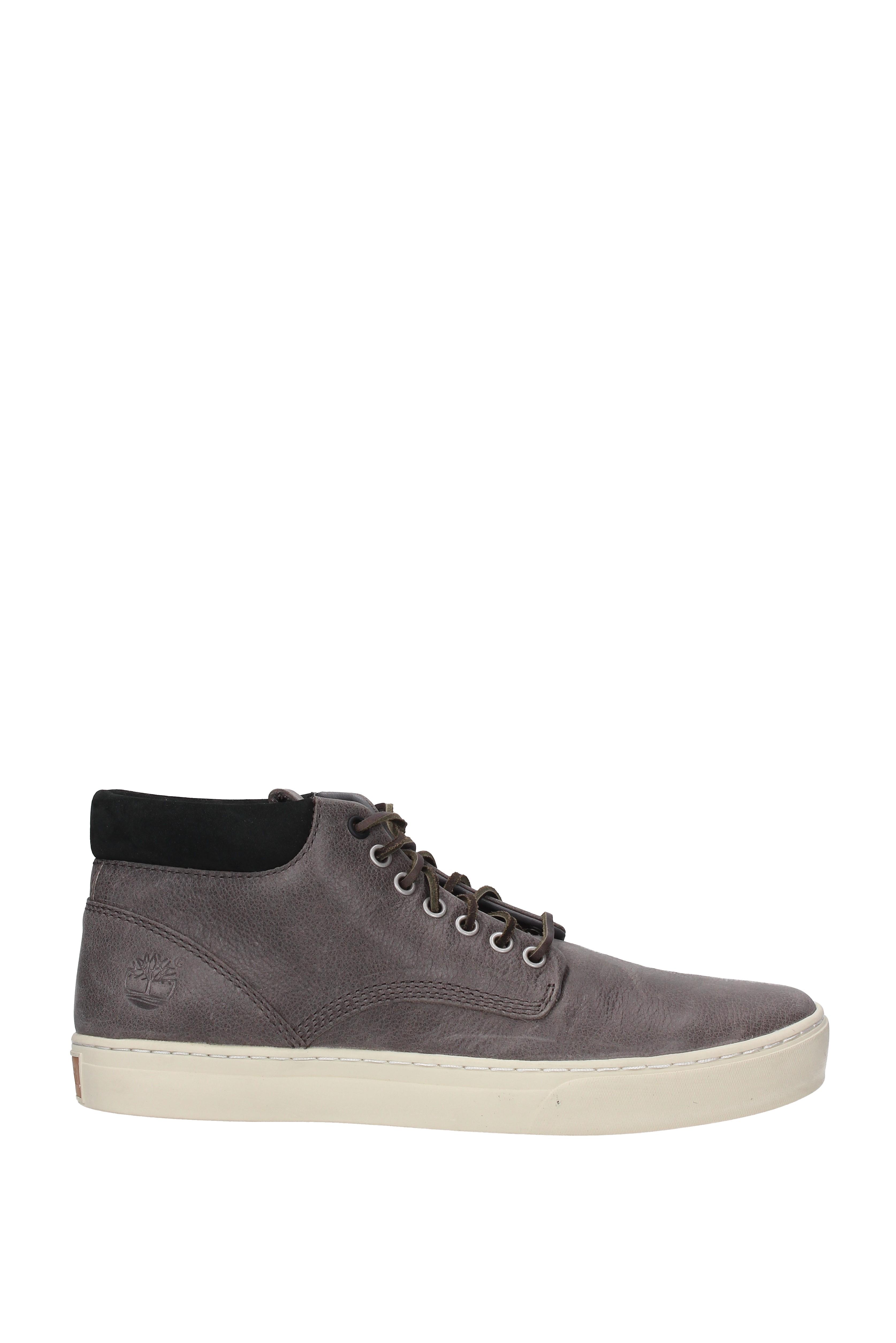 sneaker timberland uomo